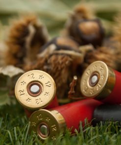 Shotshells Game